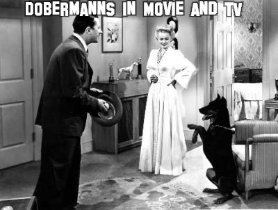 Dobermanns in Movie